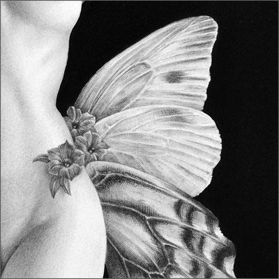 「Butterfly dance」部分