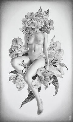 「Metamorphose -dreaming flower-」 / 455×273mm / Pencil on paper.
