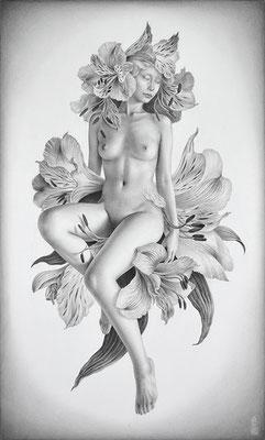 「Metamorphose -dreaming flower-」 / 455×273mm / Pencil on paper.