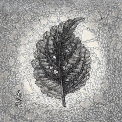 「あめつち」/ 6.5x6.5cm / Pencil, acrylic gouache on paper.(二点一対作品)