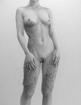 静かに発生する / 2014 / 鉛筆、紙 / 410×318mm