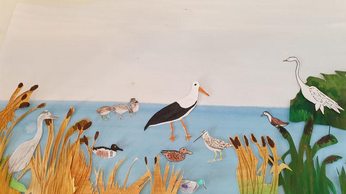 Die Rieselfelder - ein Raum für viele Vogelarten