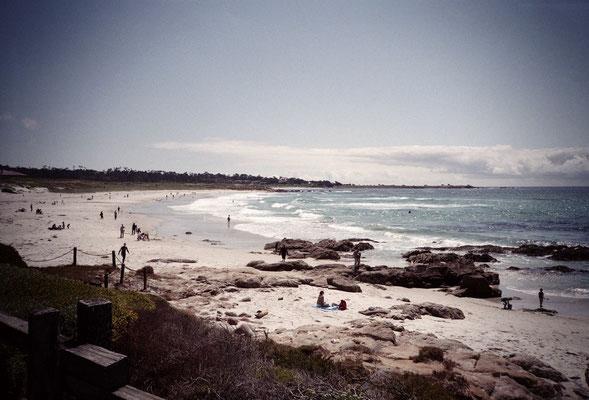 Monterey #1