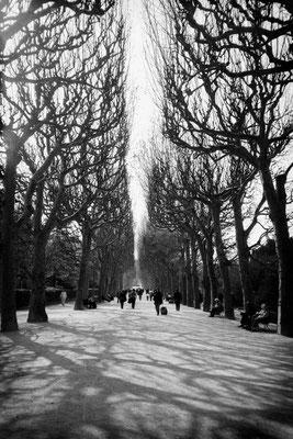 Paris#6