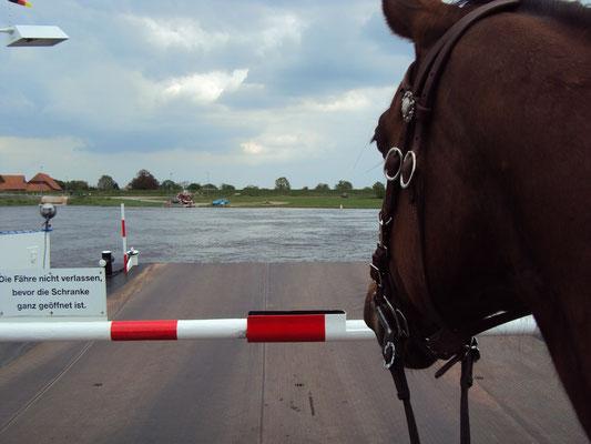 mit der Fähre über die Elbe