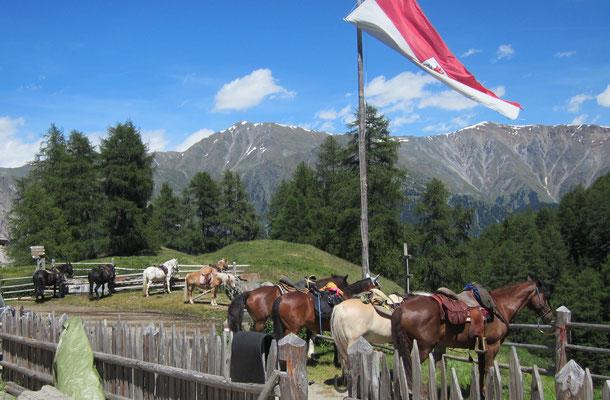 von Alphütte zu Alphütte am Reschenpass