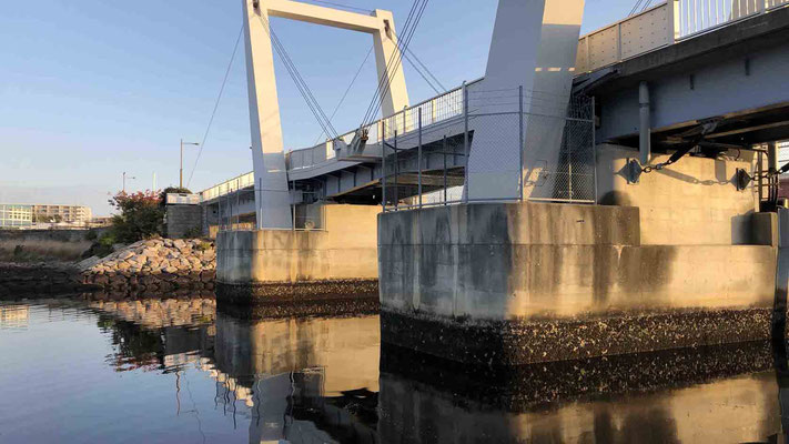 西宮浜 跳ね橋(御前浜橋)シーバスナイトゲーム