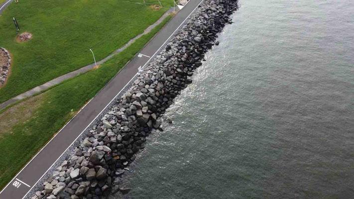 50〜100m地点 東京ゲートブリッジデイゲームでシーバス連発 活性高い若洲海浜公園の朝まずめの釣り