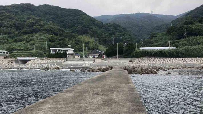 堤防 時合突入で青物3連発 淡路島灘黒岩の釣り・ショアジギング