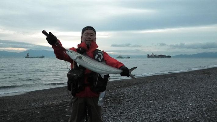 静岡県静岡市清水区の三保海岸で釣った72cmのサワラ