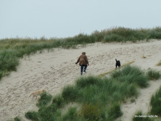 aufwärts in den Dünen