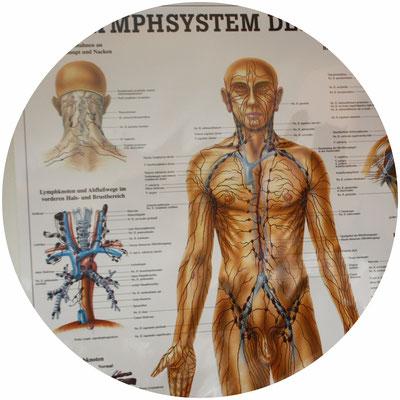 Naturheilpraxis, Naturheilpraktiker, Klassische Massage