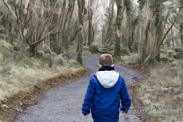 "En el parque nacional ""The Burren"""