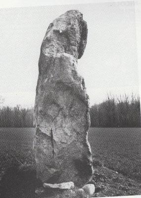 Grane pierre