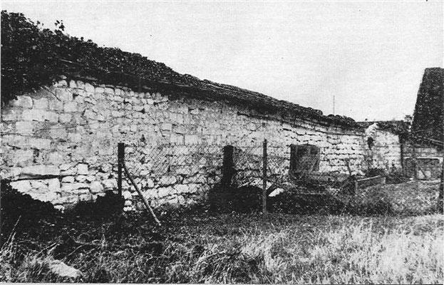 Mur d'enceinte où étaient adossés les pêchers