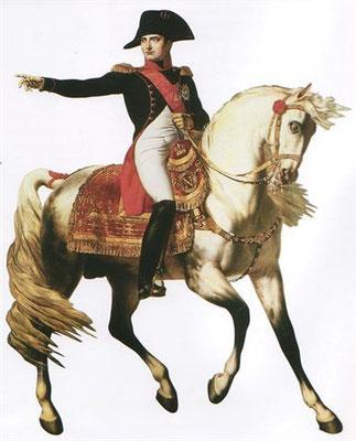 Napoléon suit le cours de la Seine à Troyes
