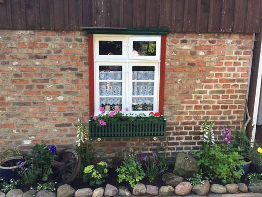 Fenster Sommerküche