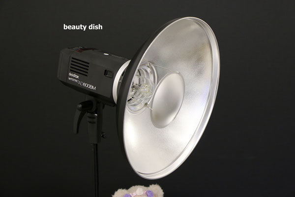 18 inch beauty dish on the aD600