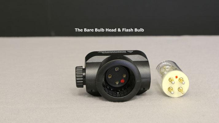 bare bulb head