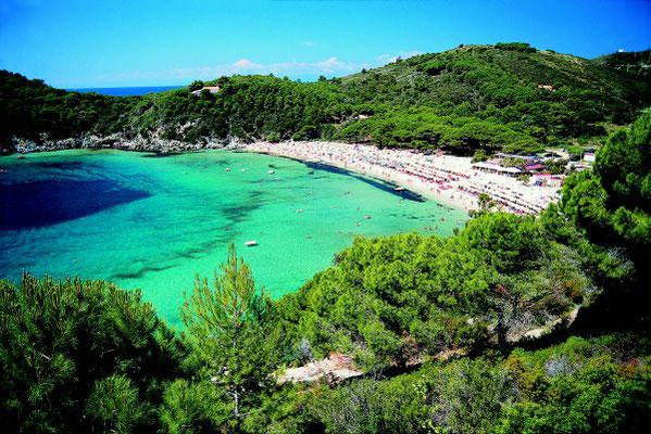 Familien-Segelyacht Mallorca