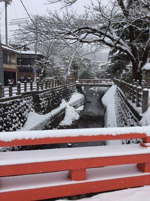 桜橋からの眺め