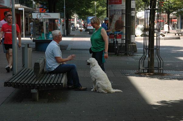 Frauchen und ich beim Verkehrsteil - sie musste da nach dem Weg zum Bahnhof fragen!
