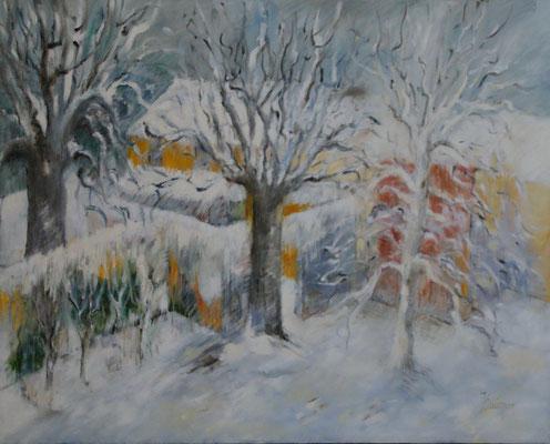 Jardin sous la neige 25 F Hiver 2021