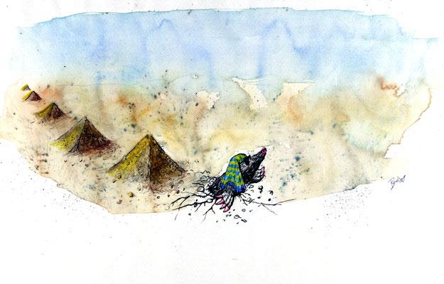 Ägyptischer Maulwurf