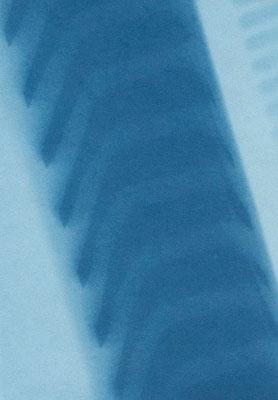 Eliana Bürgin-Lavagetti | Lichtsieb 2009. Cyanotypie. Die Licht-und Schattenseiten des immer gleichen Gegenstandes, eingefangener Augenblick, sichtbar geworden durch die Cyanotypie.