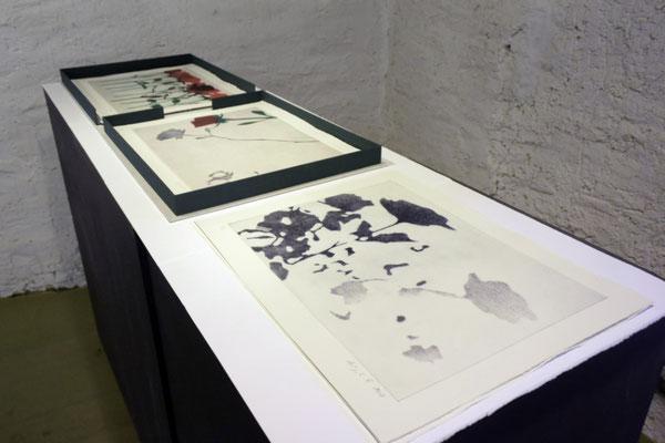 Ausstellungsansicht im Salzhaus Brugg während der Literaturtage (Das Buch als Gesamtkunstwerk), Brugg, Schweiz   2018