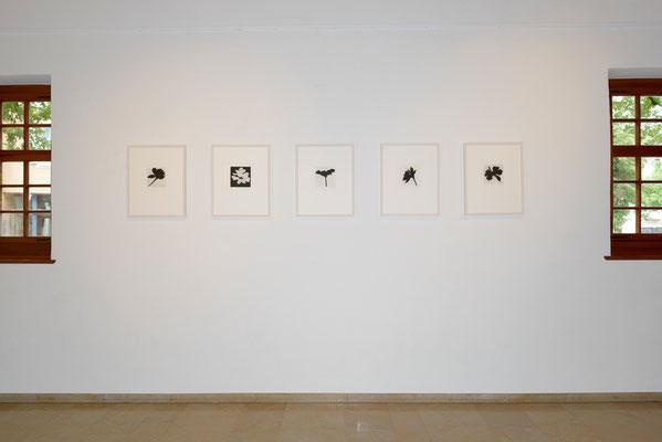 Eliana Bürgin | Golden Hour (Mezzotinto) | Ausstellung SchattenwurfSchatten, Trotte Arlesheim, Arlesheim, Schweiz, 2016