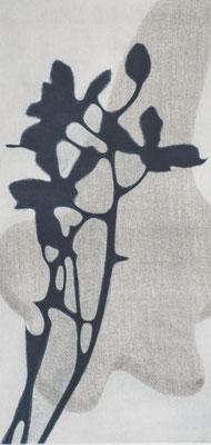Eliana Bürgin   Zusammenspiel, Mezzotinto, Roulette, Druck von zwei Kupferplatten auf Zerkall Papier, Blattgrösse 34 x 55 cm, Kupferplatte 20 x 40 cm. Zwei Exemplare.