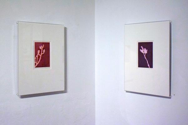 Reflexion. Museum Design Collection Basel, Schweiz, 2020