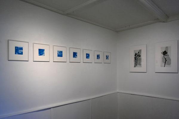 Blaue Mauritius (links), Schattenriss (rechts). Museum Design Collection Basel, Schweiz, 2020