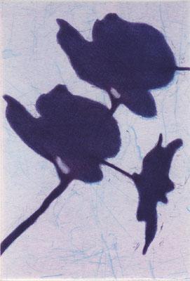 Eliana Bürgin-Lavagetti | Reflexion 2019. Mezzotinto, Roulette, Kaltnadel. Kupferplattenformat 10 x 15 cm. Blattgrösse 28x 38 cm. Drei Exemplare auf Zerkall Bütten 250 g/m2.