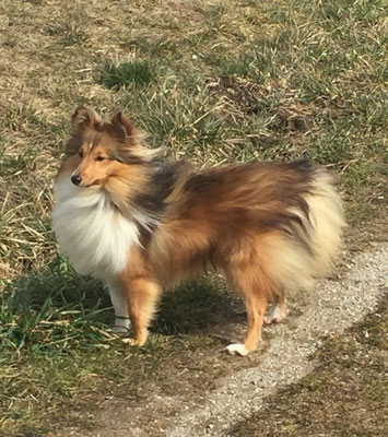 """Migo vom Winde verweht und als kleiner """"Dreckspatz""""."""