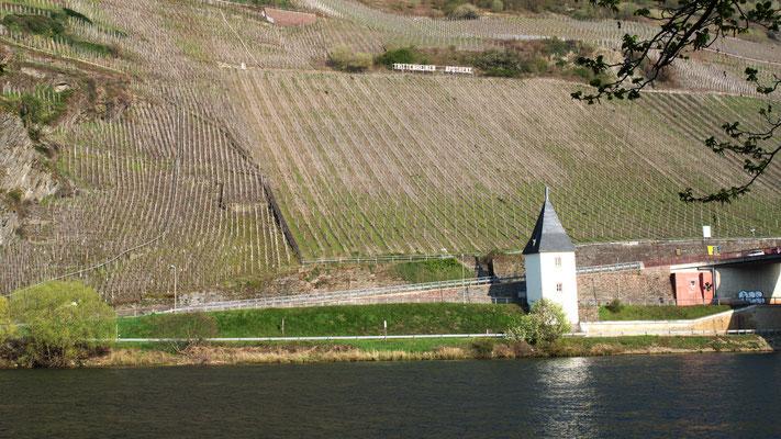 Hinter fast jeder Flussbiegung trifft der Radler auf prominente Weinlagen.
