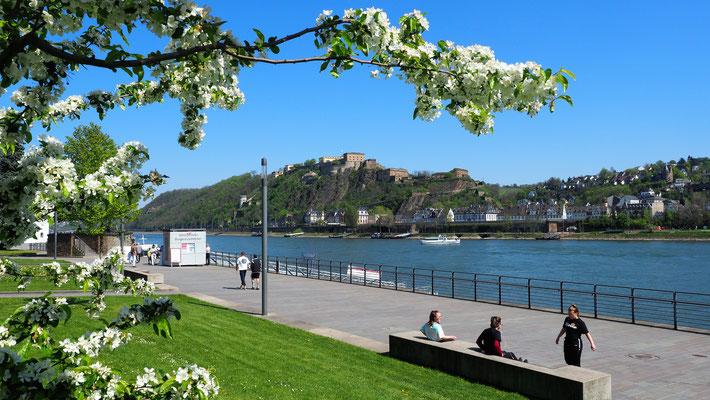 Die Festung Ehrenbreitstein thront über Koblenz und dem Deutschen Eck.