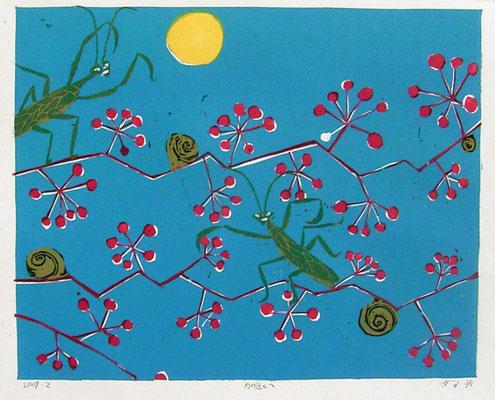 2009年 木版画 「月に近づく」