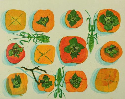 「となりの柿は赤い」 2013 主に町田市にて