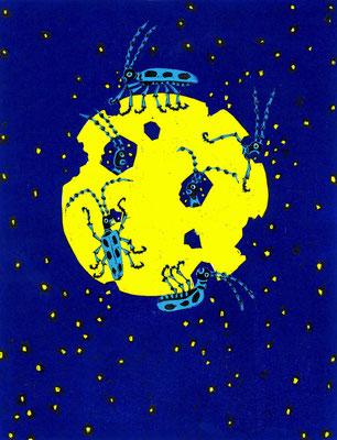 月から降る星 2016