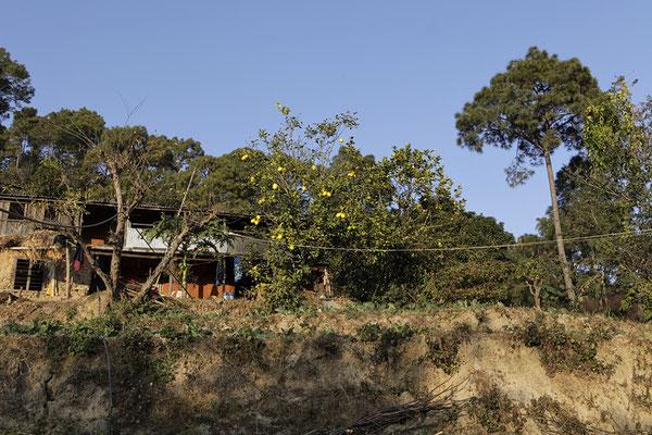 Das Haus des Lehrers Mr. Luitel