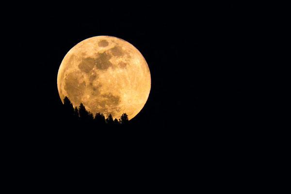 Mondaufgang über der Rigi von Luzern aus gesehen  (Tribschen)