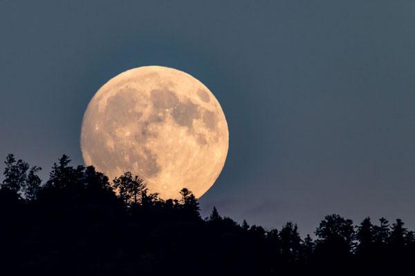 Mondaufgang über Bürgenstock von St. Niklausen aus gesehen (1 Tag vor Vollmond)