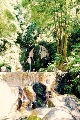 Caldeira Velha, Sao Miguel, Azoren