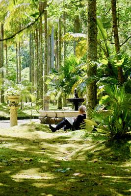 Maler im Terra Nostra Park, Sao Miguel, Azoren