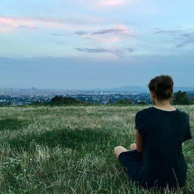 Himmelswiese, Blick auf Wien