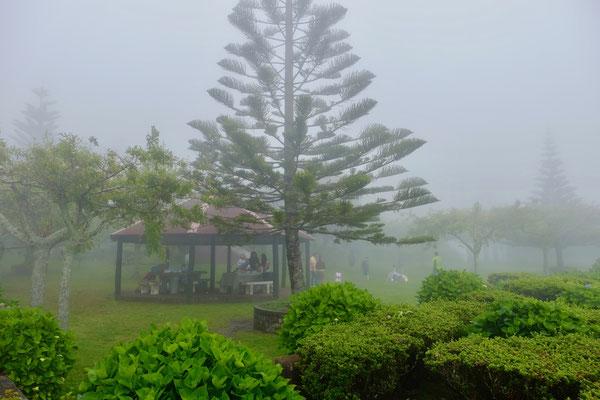 Picknick geht auf Sao Miguel immer, auch im Nebel