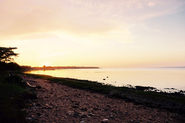 Schweden, Kattegattleden, wildromantischer Zeltplatz am Meer