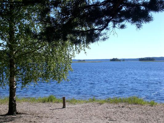 """Die Insel Kelvenne. Nordische Wälder an Sandstränden und Buchten inmitten des weitläufigen Archipels und Naturschutzgebietes  """"Päijänne See Nationalpark""""."""